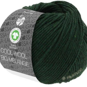 Lana Grossa Cool Wool Big Melange 206